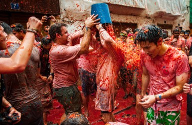 BUNOL, SPAIN - AUGUST 28: Revellers celebrate covered by tomato pulp while participating the annual Tomatina festival on August 28, 2013 in Bunol, Spain. An estimated 20,000 people threw 130 tons of ripe tomatoes in the world's biggest tomato fight held annually in this Spanish Mediterranean town. (Photo by David Ramos/Getty Images)