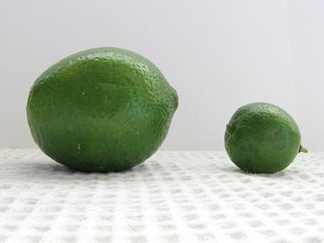 key-lime-tart-recipe-taste-and-tell-2